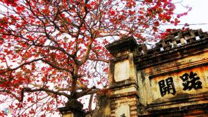 Mùa thu trên phố cổ Hà Nội