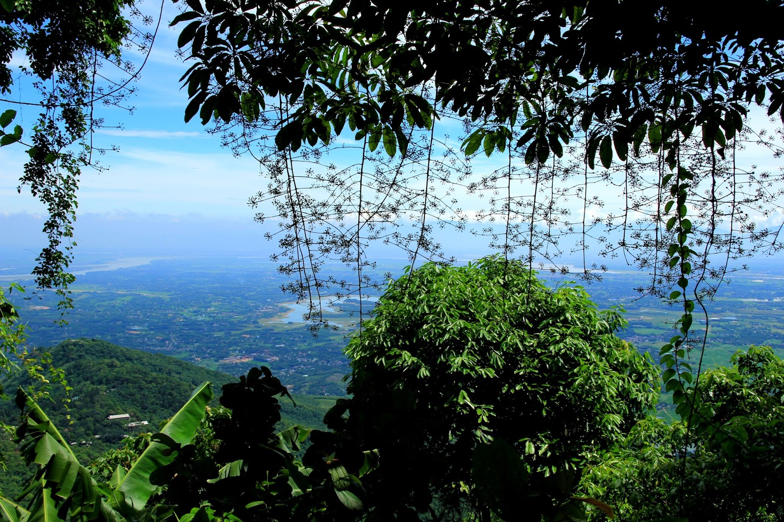 Một góc nhìn từ vườn quốc gia Ba Vì