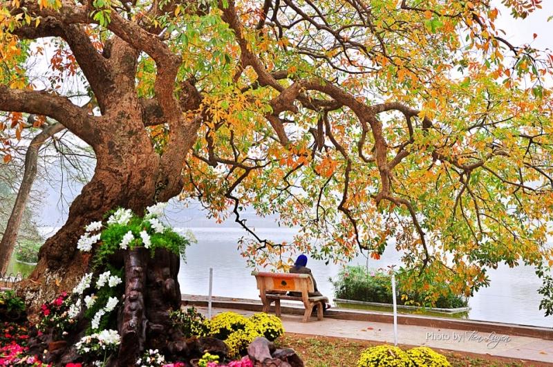 Vẻ đẹp mùa thu Hà Nội