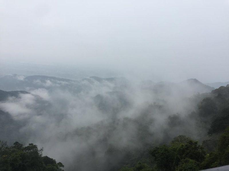 săn mây tam đảo