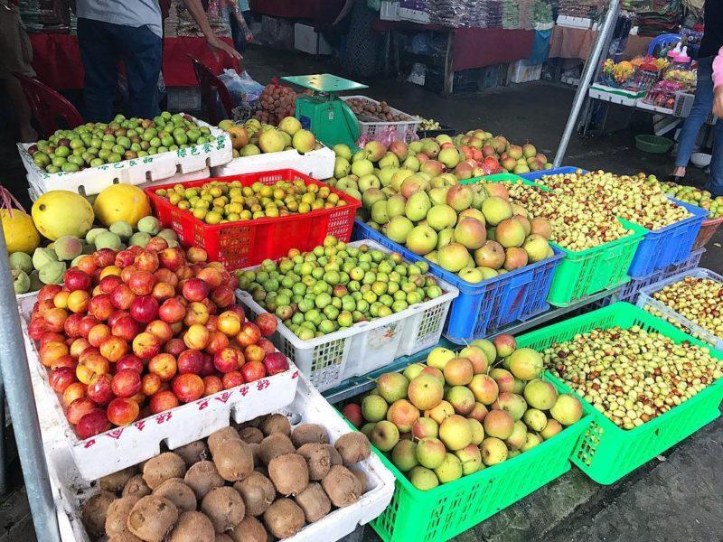 Hoa quả Tam Đảo