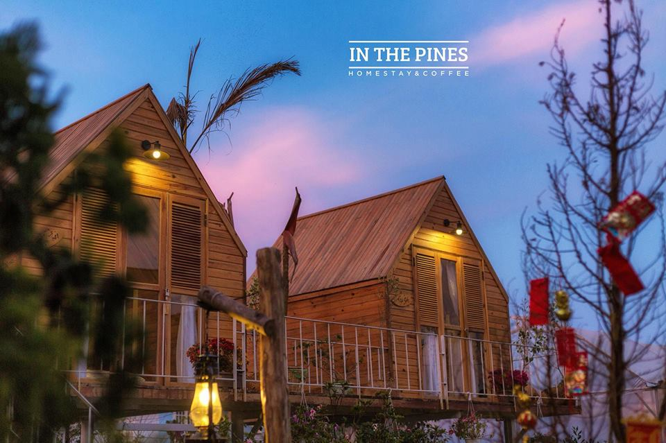 in the pines homestay Đà Lạt