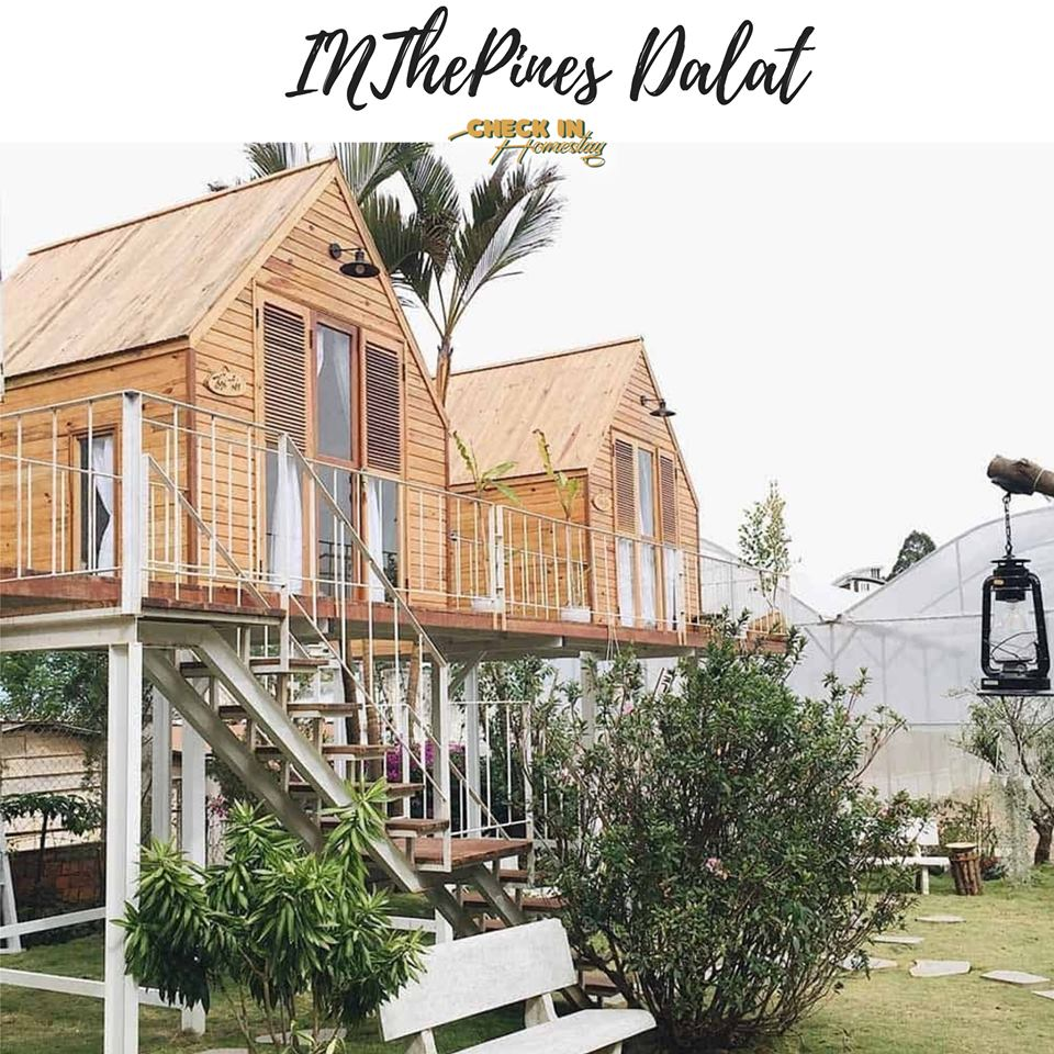inthepines homestay
