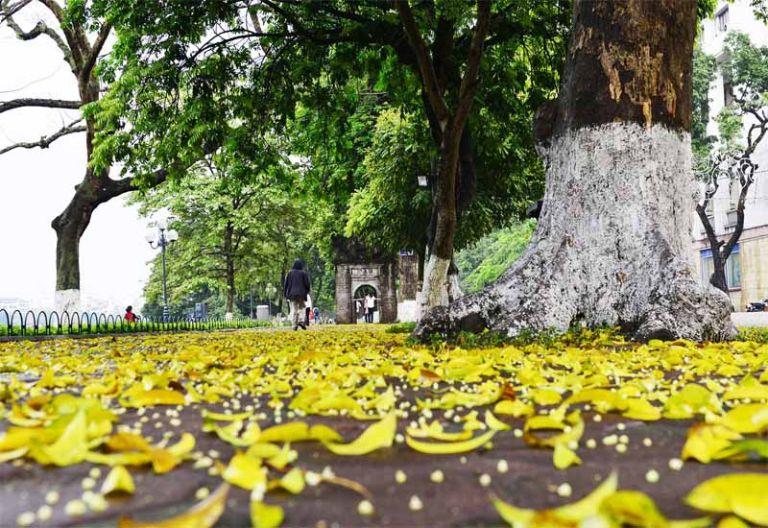 Hà Nội mùa thu đẹp nhất trong năm