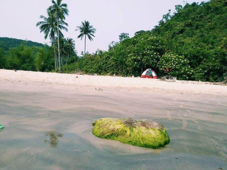 Bãi Dừa