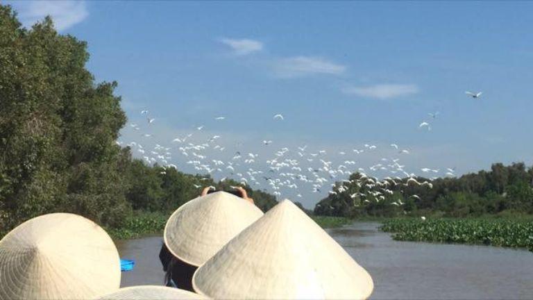 chèo thuyền làng nổi Tân Lập