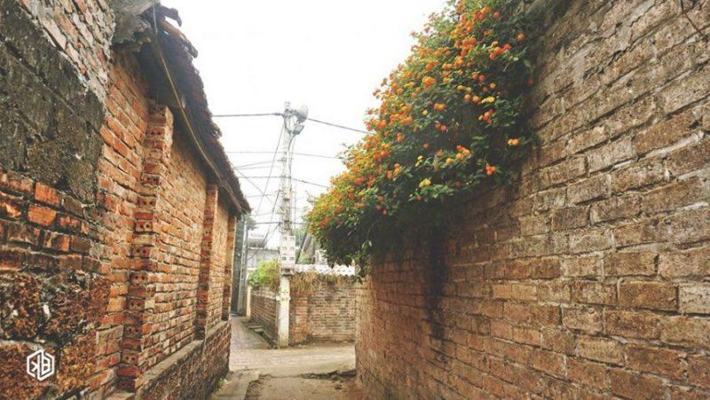 Đường làng khu làng cổ Đường Lâm