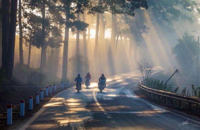 Đường đi đồi chè Cầu Đất