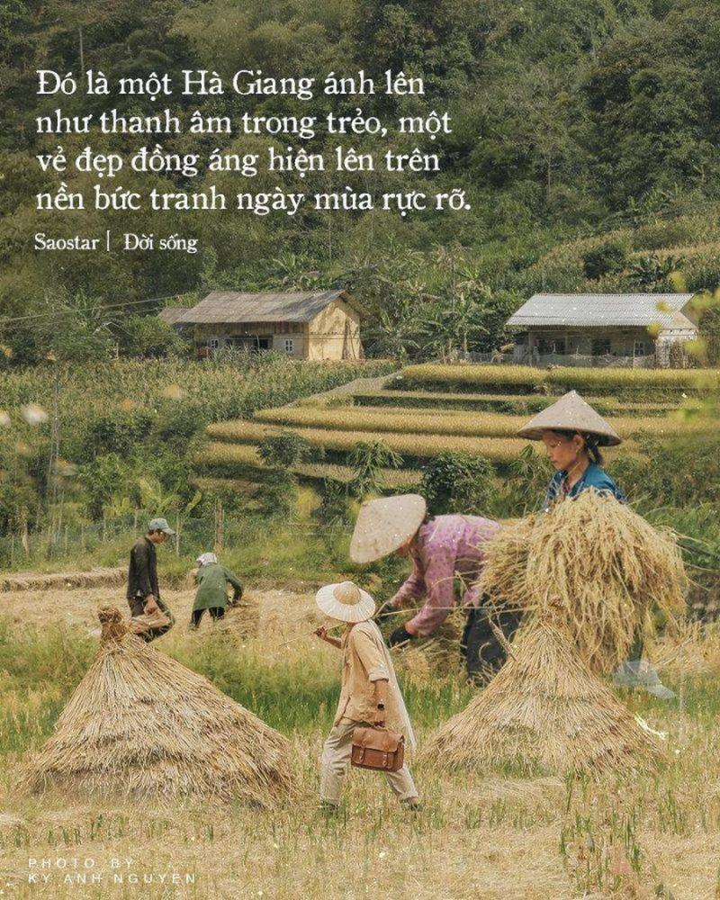 Hà Giang mùa gặt