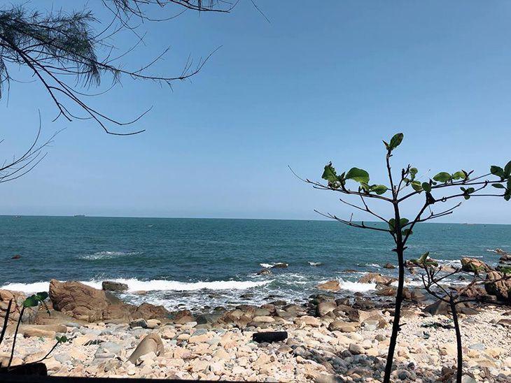 bãi biển hoang dã