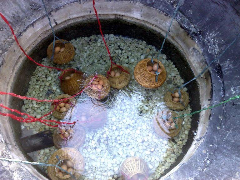 Luộc trứng bằng suối nước nóng