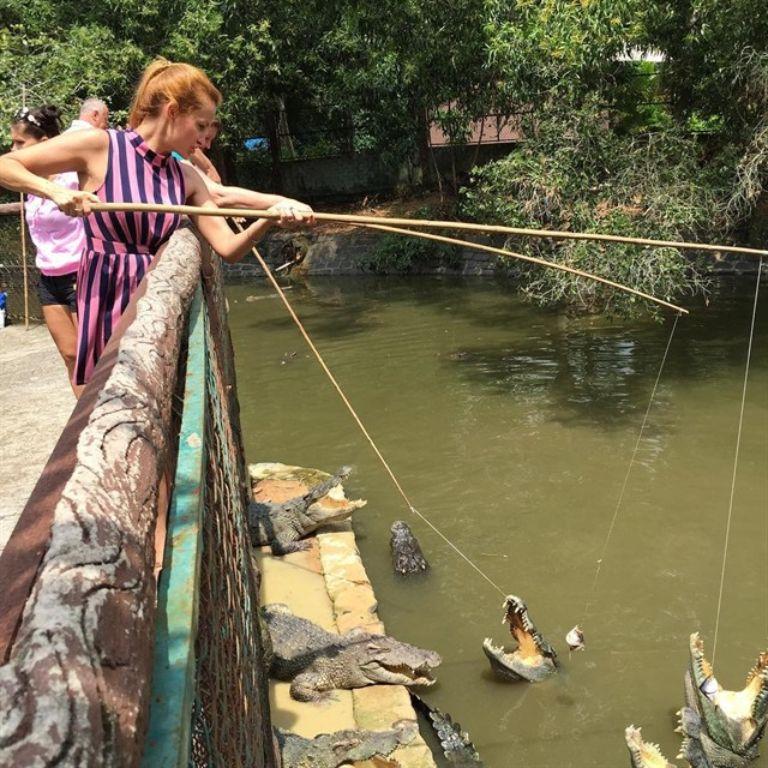 Câu cá sấu ở suối nước nóng Bình Châu