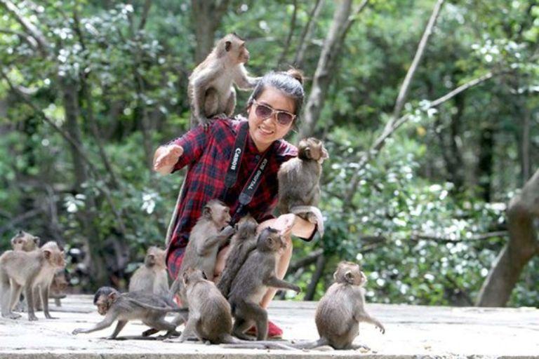 Những chú khỉ rất thích chơi cùng khách du lịch
