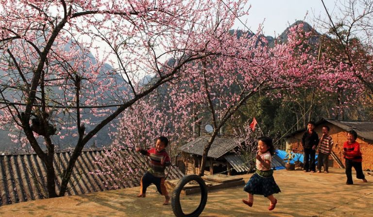 mùa xuân mộc châu
