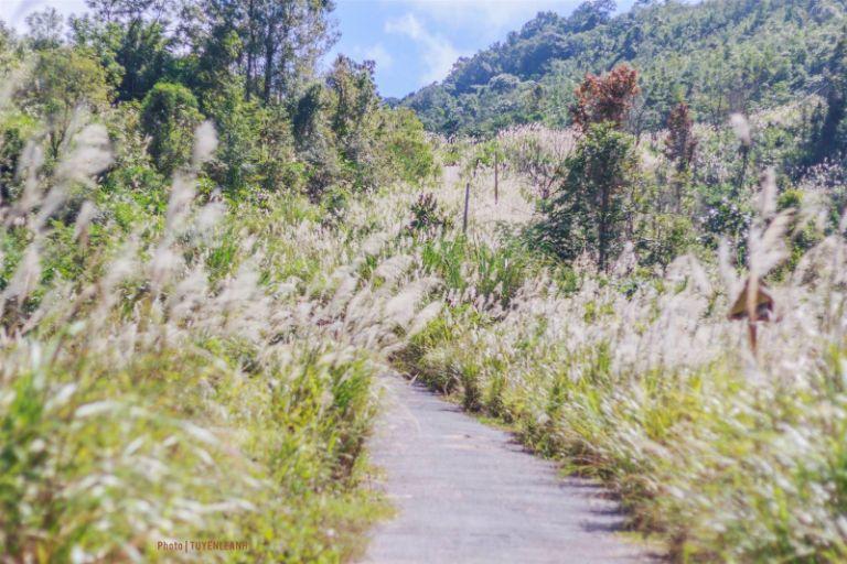 Phượt đèo Sa Mù ở Huế