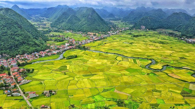 ngắm lúa ở Bắc Sơn