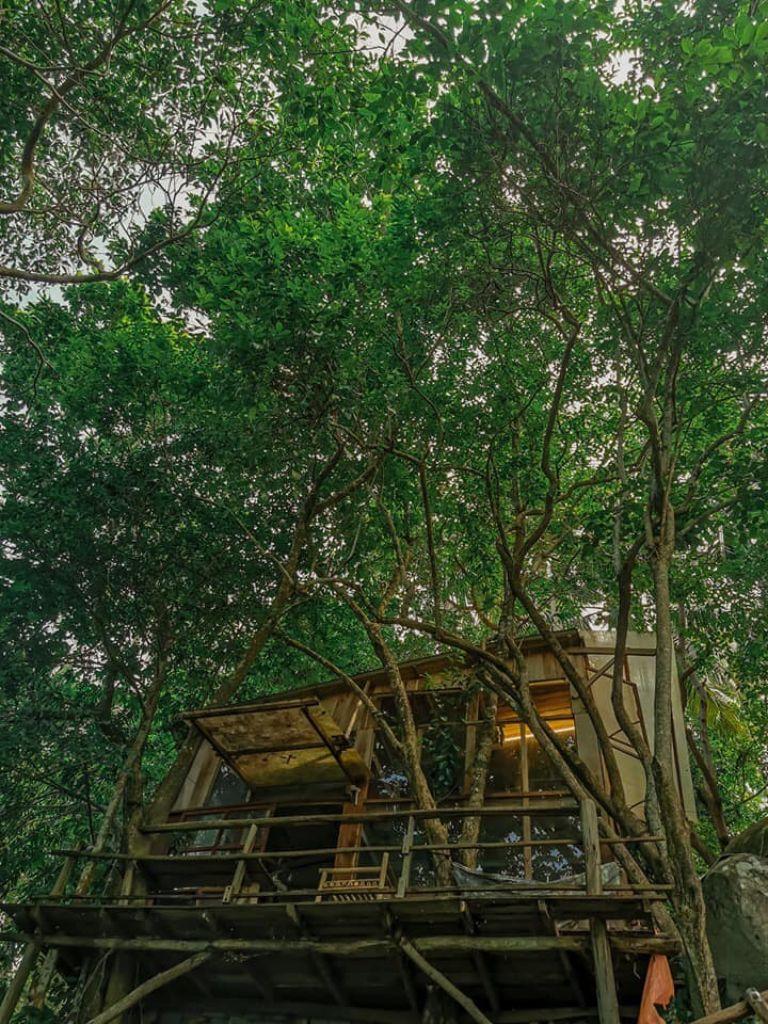 Lamien Lodge homestay