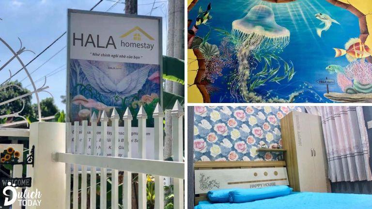 Hala homestay | Hòn Sơn homestay