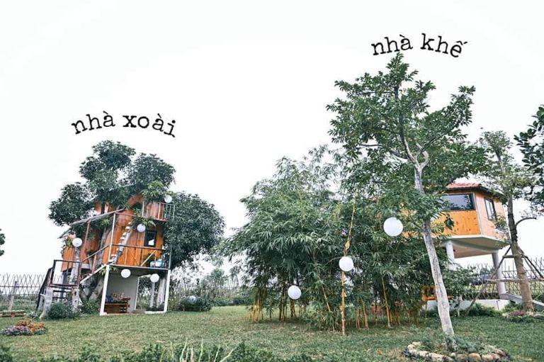 OKia Treehouse   Homestay Hà Nội có bể bơi