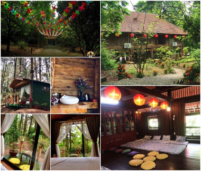 Pine Hill Villas & Camping
