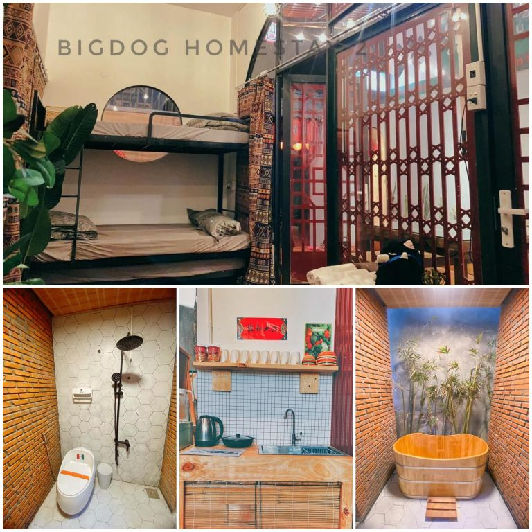 BigDog | Homestay Ninh Thuận
