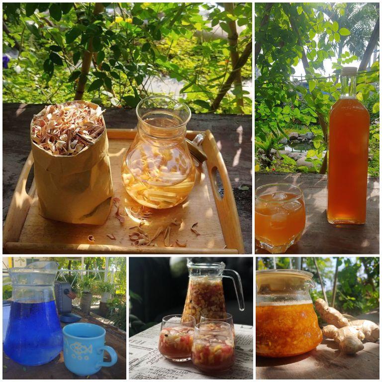 thưởng thức hương vị trà độc đáo tại homestay tuy hòa