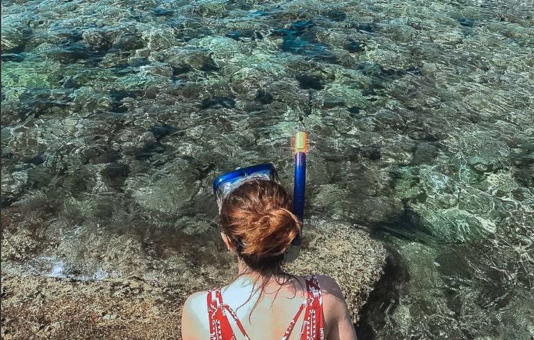 Trải nghiệm ngắm san hô sẽ cực kì thích thú
