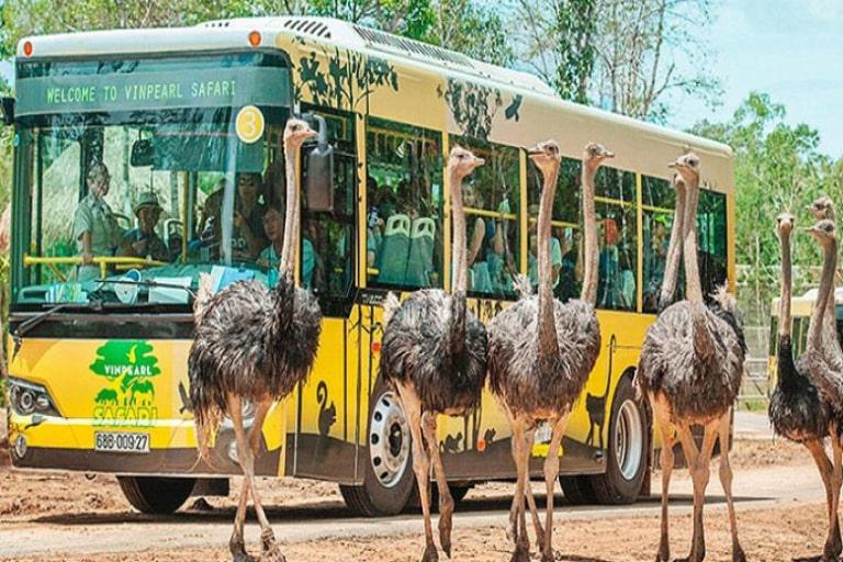 Công viên sở thú lớn và quy mô nhất ở đảo Phú Quốc