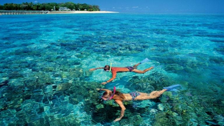 Trải nghiệm ngắm san hô dưới biển