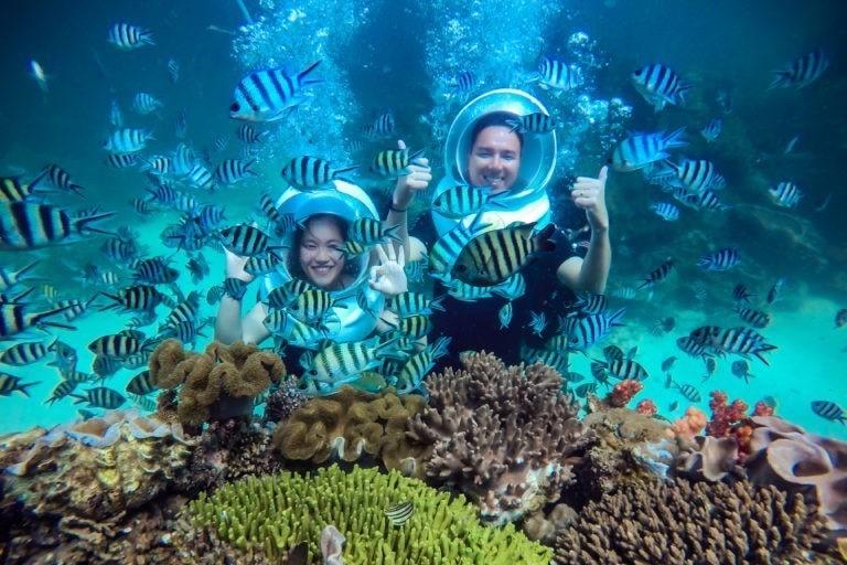Công viên san hô đa dạng và phong phú nhất Phú Quốc