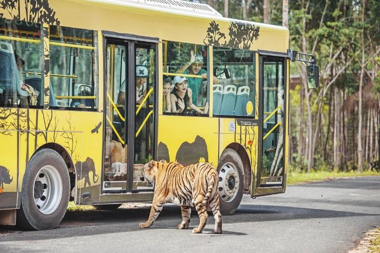 Trải nghiệm độc đáo, mới lạ và đặc biệt chỉ có ở công viên sở thú
