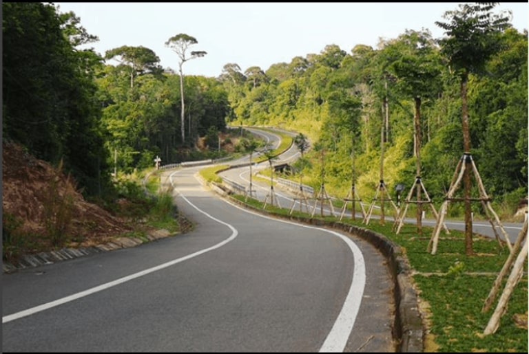 There are many options to go to Phu Quoc National Forest