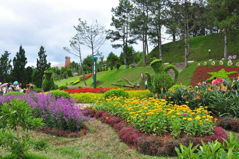 Nơi đây trồng vô số các loài hoa khác nhau