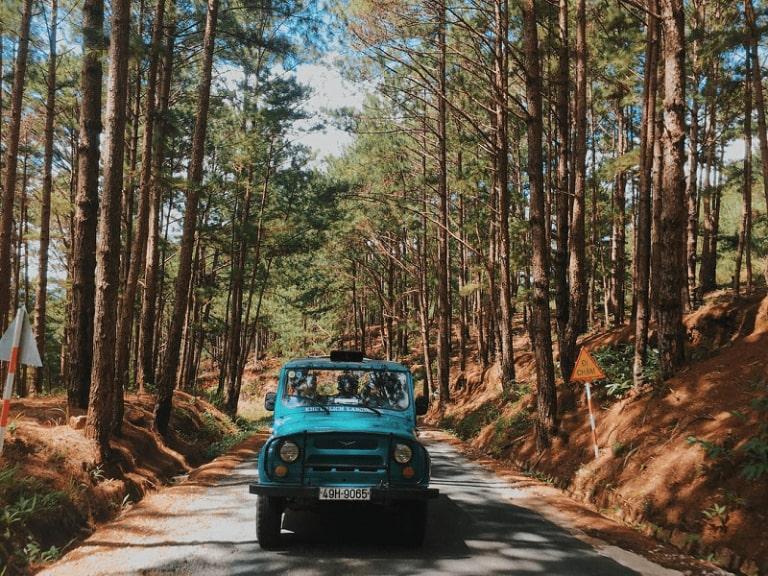 Đối với những địa điểm du lịch ở xa bạn nên thuê xe có người lái