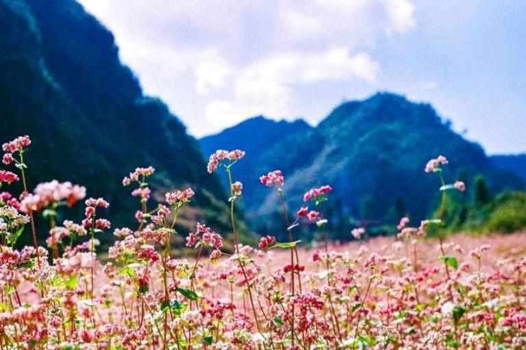 Giá tour du lịch tại Hà Giang không cố định