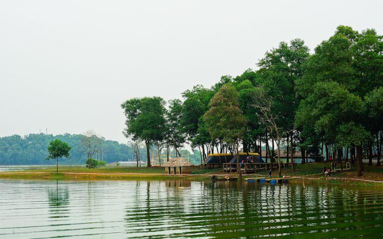 đảo Phượng Đồng Mô