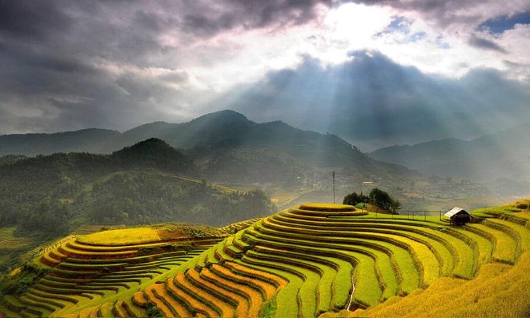 Mùa lúa chín nơi đây sẽ được bao phủ bằng một sắc vàng đặc trưng