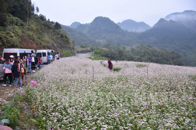 Đi xe khách đến Hà Giang sẽ giảm bớt mệt mỏi cho bạn