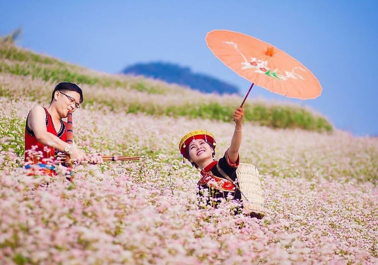 Ngắm hoa và tham gia các hoạt động vui chơi