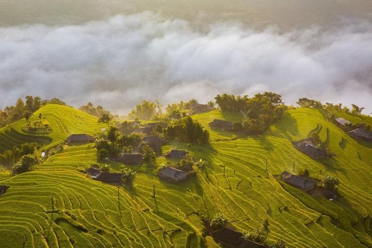 Địa điểm ngắm lúa chín tại Hà Giang được nhiều người lựa chọn