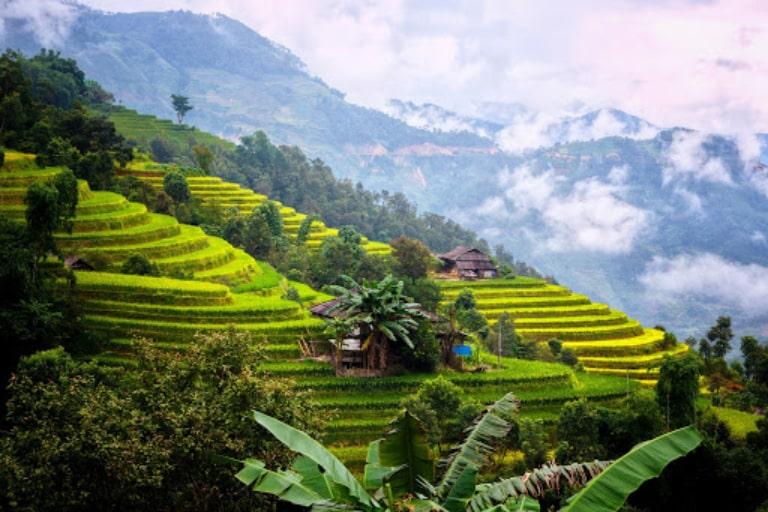 Chinh phục đường đèo và ngắm nhìn những thửa ruộng bậc thang vào mùa lúa chín