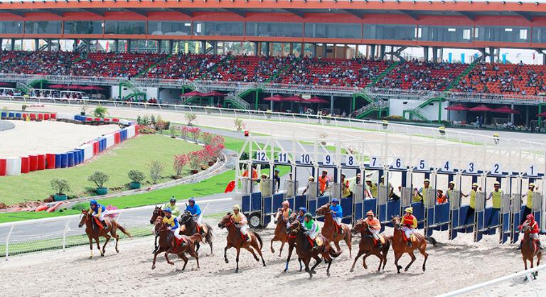 Những chú ngựa bắt đầu sải bước chạy trên đường đua